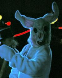 Das Weiße Kaninchen
